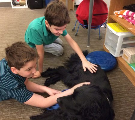 facility dog at aim academy with children