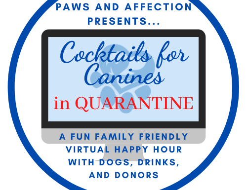 2020 Cocktails for Canines in Quarantine
