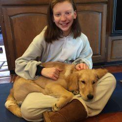 golden retriever puppy with child